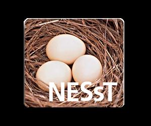nesst_logo