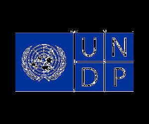 unpd_logo